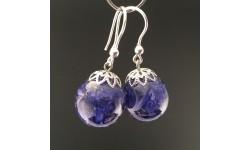 Boucles d'oreilles bleuet 16mm crochets argent
